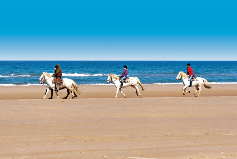 locations deauville